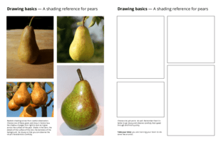 Drawing basics - A shading reference for pears