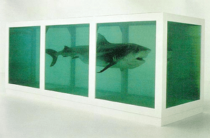 Damien Hirst, The Physical Impossibility of Death in the Mind of Someone Living, 1991