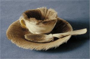 Meret Oppenheim, Object (Fur Cup), 1936